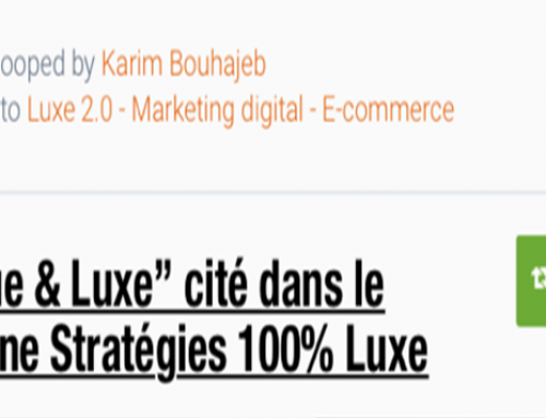 "The book ""Marque & Luxe"" in Scoop.it! – Karim Bouhajeb"